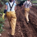 Lithuanian workers near Camborne